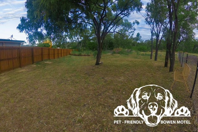 Pet Friendly Motel Bowen Queensland
